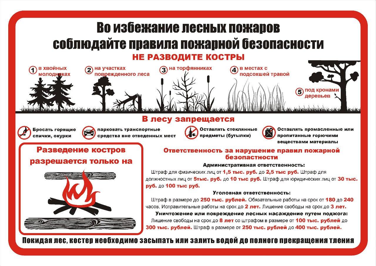 Во избежание лесных пожаров.
